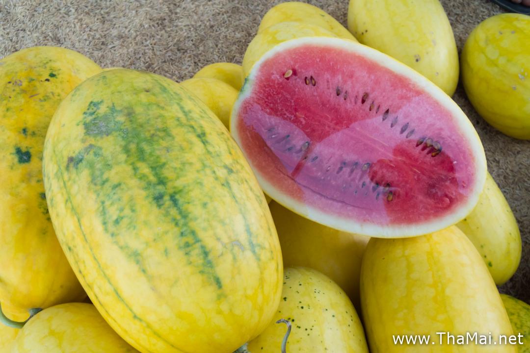 Yellow Water Melon 3