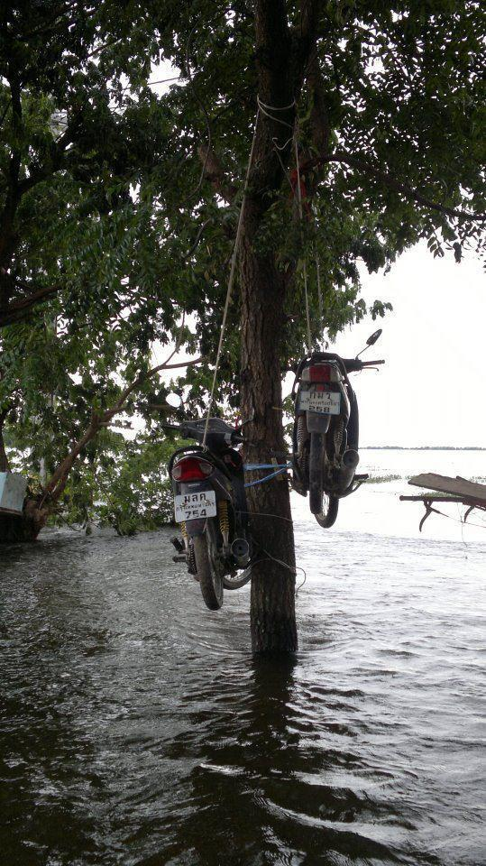 Avoid from flooding