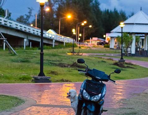 Paknam Khaem Nu Oct 2011