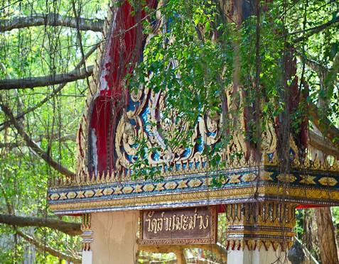 Wat Suan Mamuang